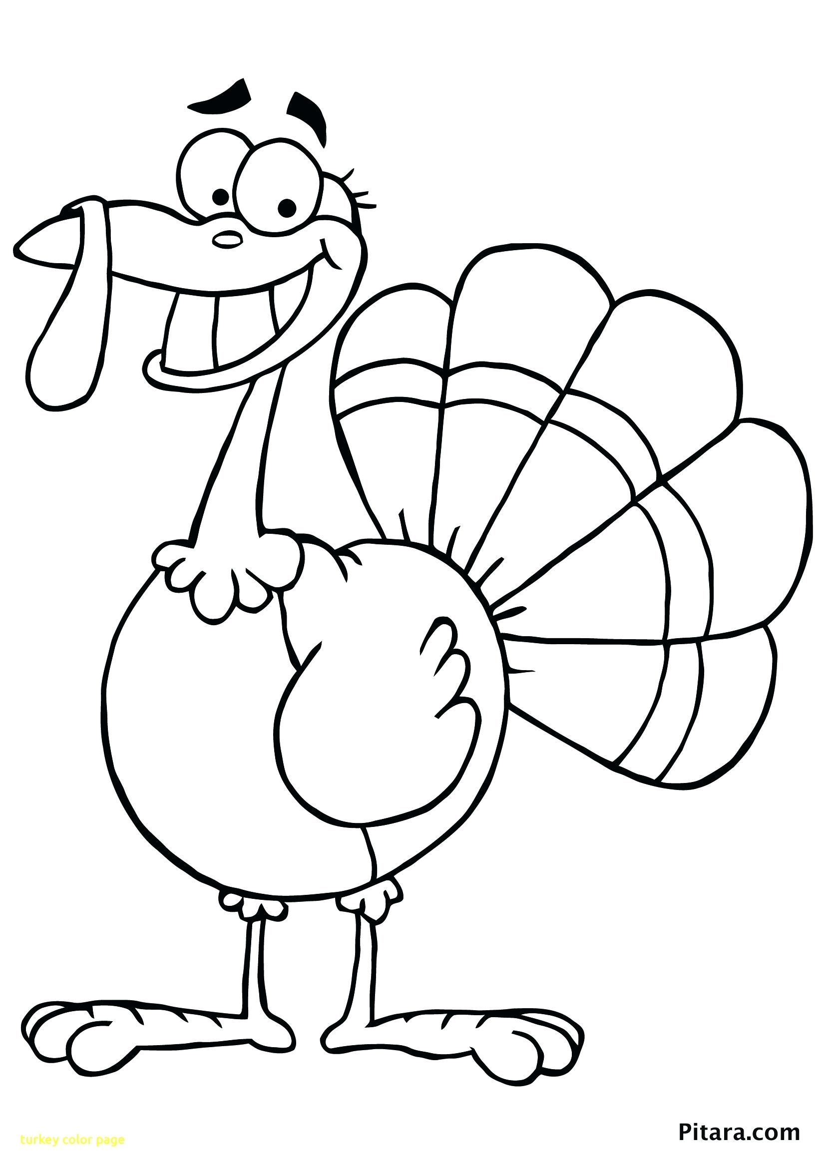 1654x2339 Insider Picture Of A Turkey To Color Page With Thanksgiving Turkey