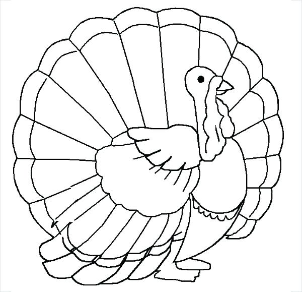 600x579 Free Turkey Coloring Page Coloring Turkey Blank Turkey Coloring