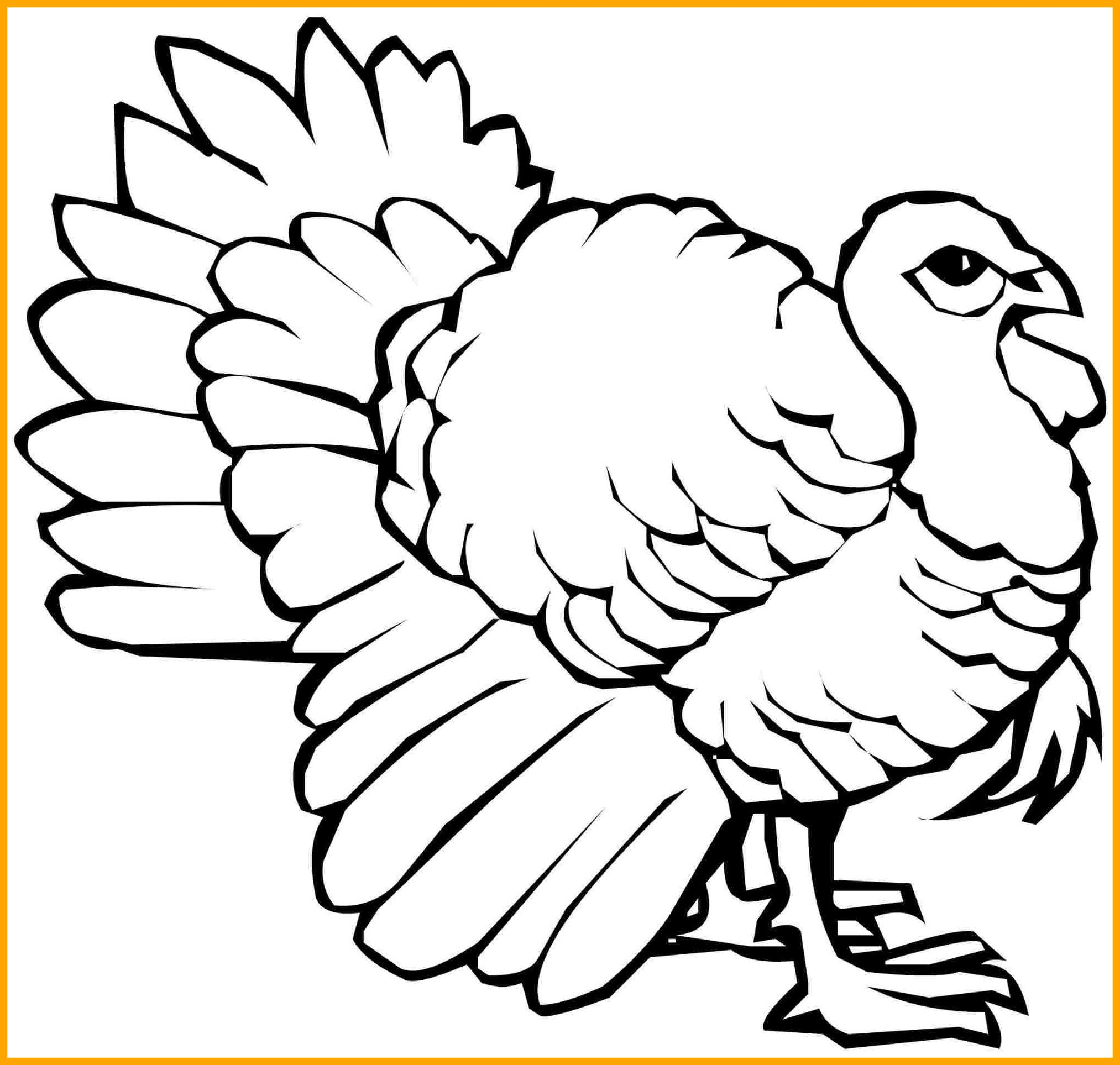 2026x1927 Stunning Thanksgiving Zentangle Turkey