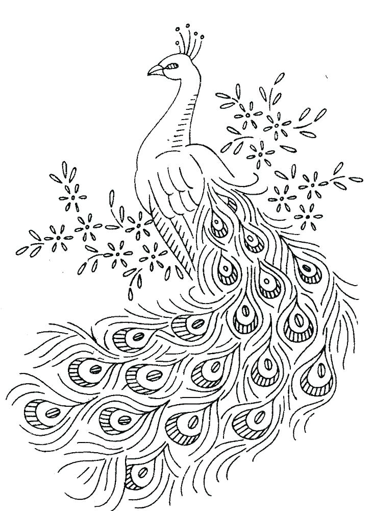 729x1000 Printable Turkey Feather Coloring Pages Page Henna Peacock Birds