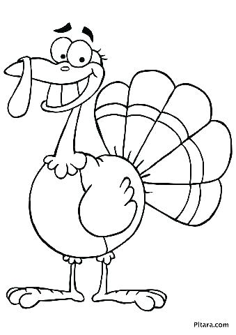 339x480 Turkey Coloring Picture Turkey Feather Coloring Pages Printable