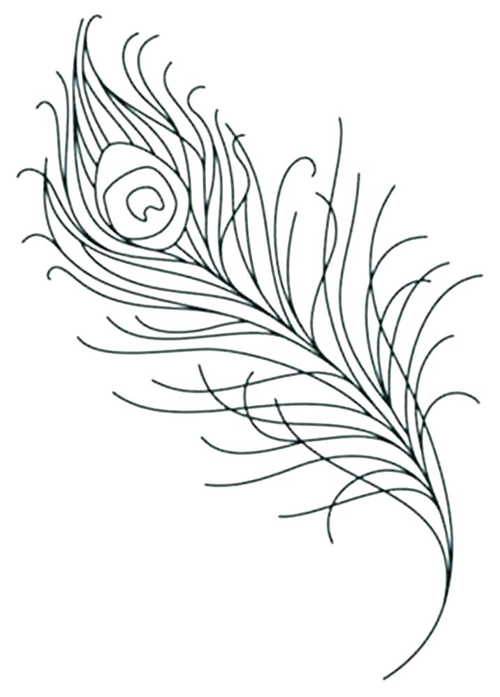 716x998 Feather Coloring Page