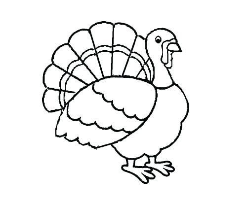 500x416 Printable Turkey Feathers Printable