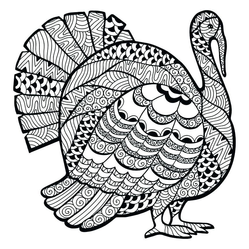 863x863 Turkey Coloring Pages For Preschoolers With Coloring Pages
