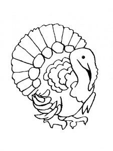 225x300 Turkey Pictures For Kids Free Coloring Pages Color