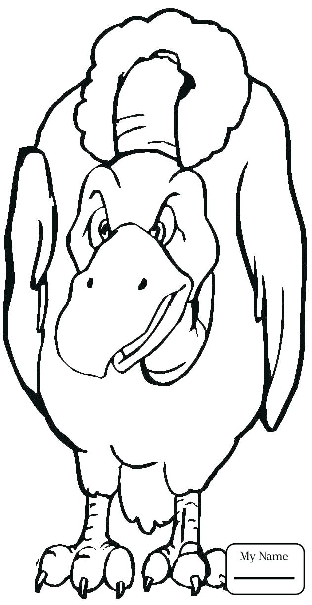 631x1224 Vulture Coloring Page Cartoon Vulture Coloring Page Turkey Vulture