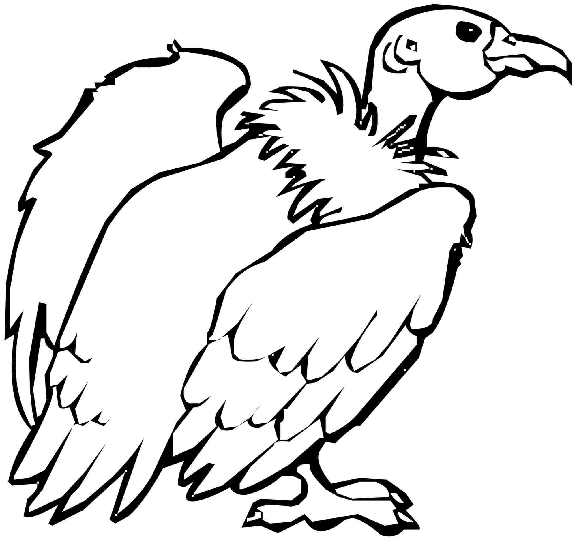 2000x1872 Vulture Coloring Page