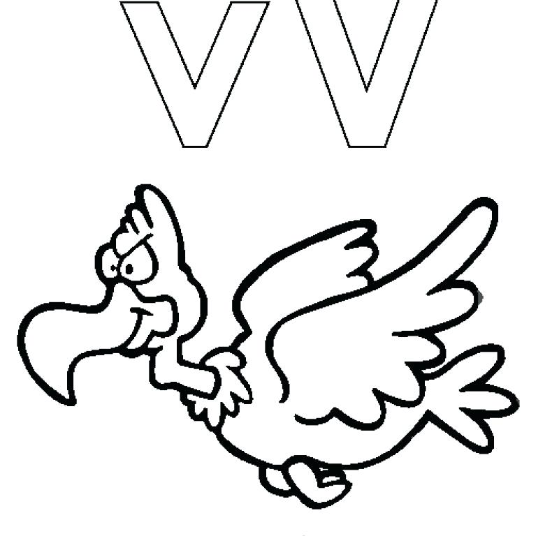 800x768 Vulture Coloring Pages Cute Coloring Letter V Is For Vulture