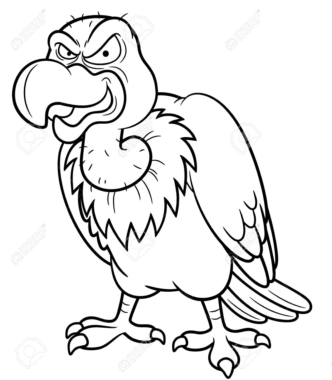 1137x1300 It S Here Vulture Coloring Pages With Page Key