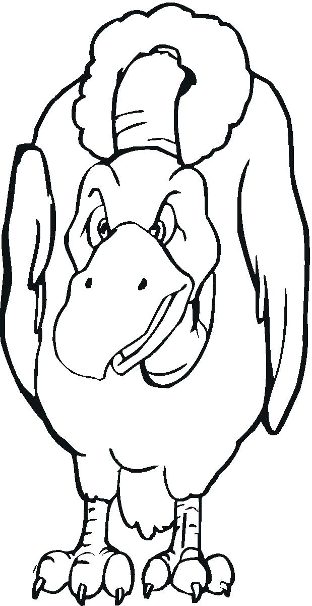 619x1200 Vulture Coloring Pages Vulture Coloring Page Vulture Color Pages