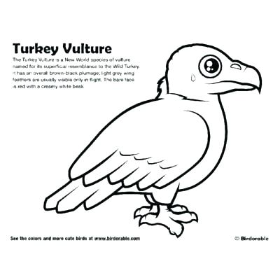 400x400 King Vulture Coloring Pages Kids Coloring Vulture Coloring Pages