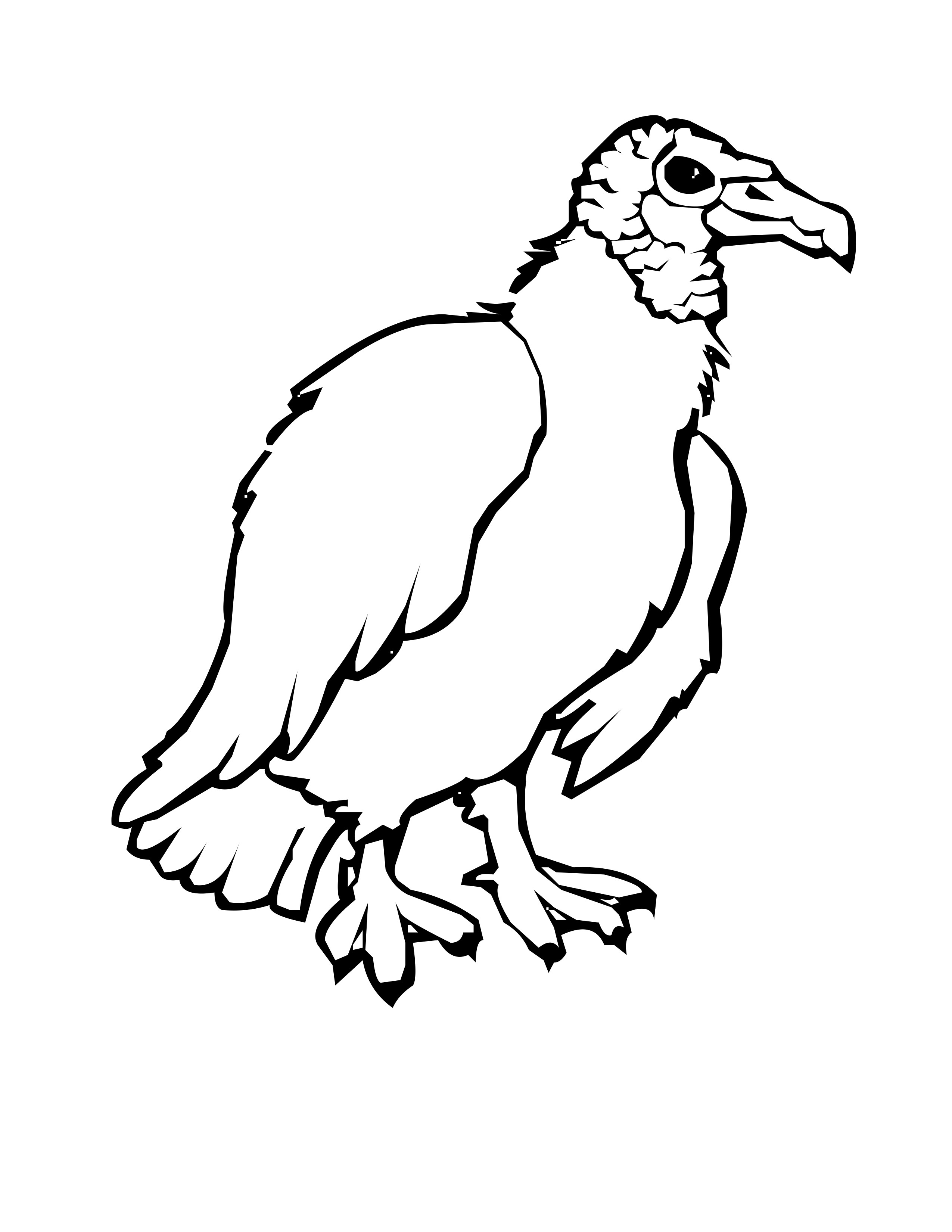 2550x3300 Practical Vulture Coloring Pages Realistic Tur