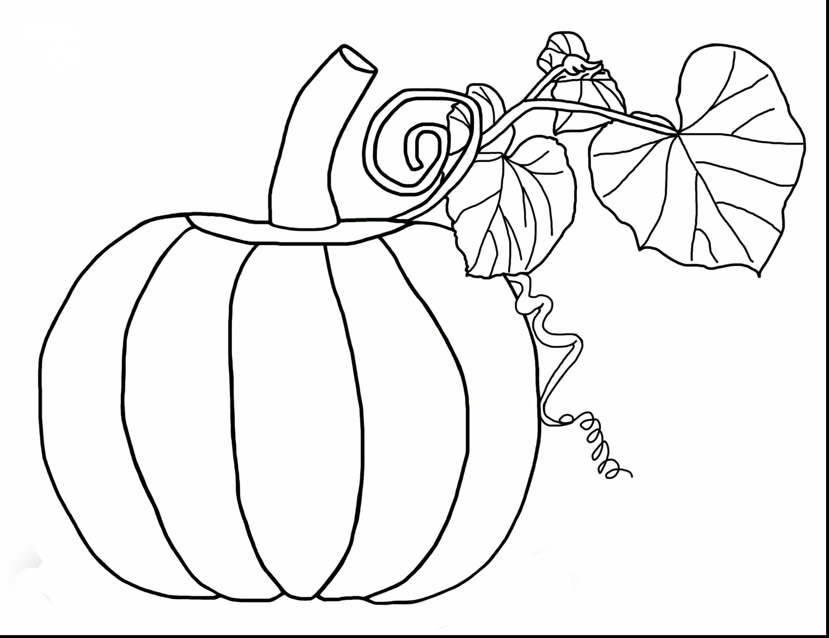 2860x2200 Turn Pictures Into Coloring Pages App Gallery