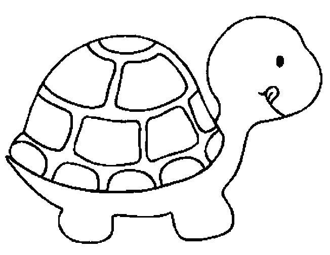 652x504 Coloring Book Pages Of Turtles