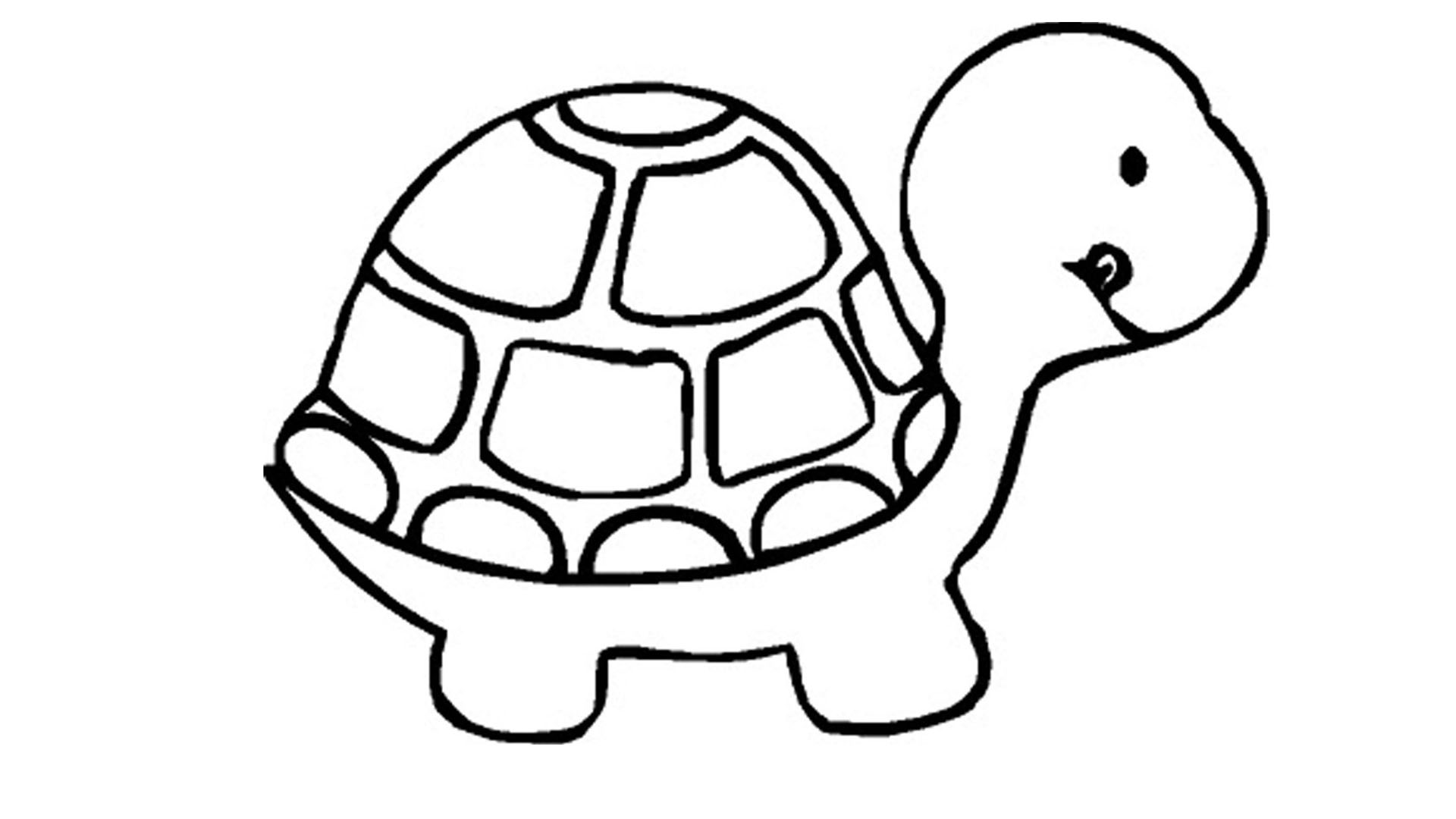 1920x1080 Happy Cute Coloring Pages Of Turtles Turtle Full Page A Impressive