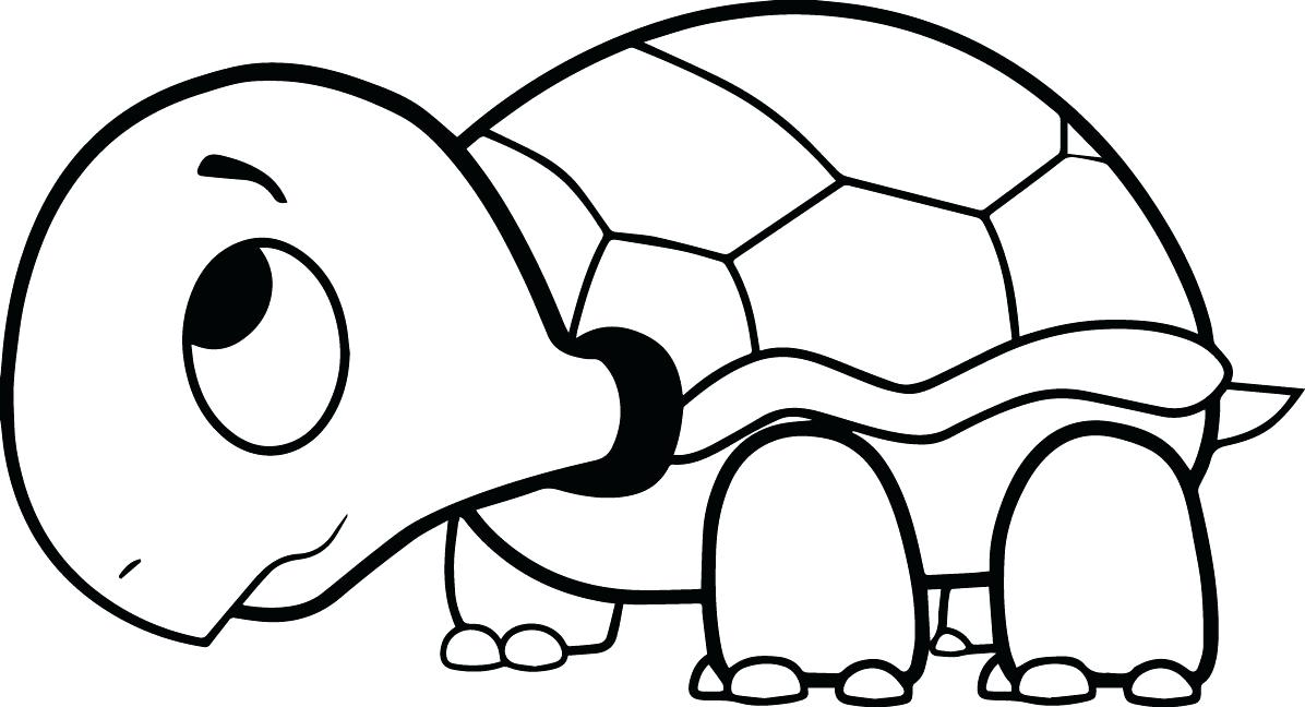 1196x648 Tortoise Coloring Page Coloring Pages Turtle Printable Of Cartoon