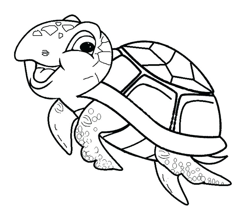 850x747 Cartoon Turtle Coloring Pages Transasia