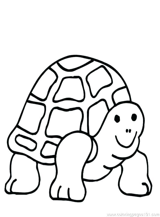 650x879 Coloring Printable Coloring Pages Ninja Turtles Cartoon Turtle