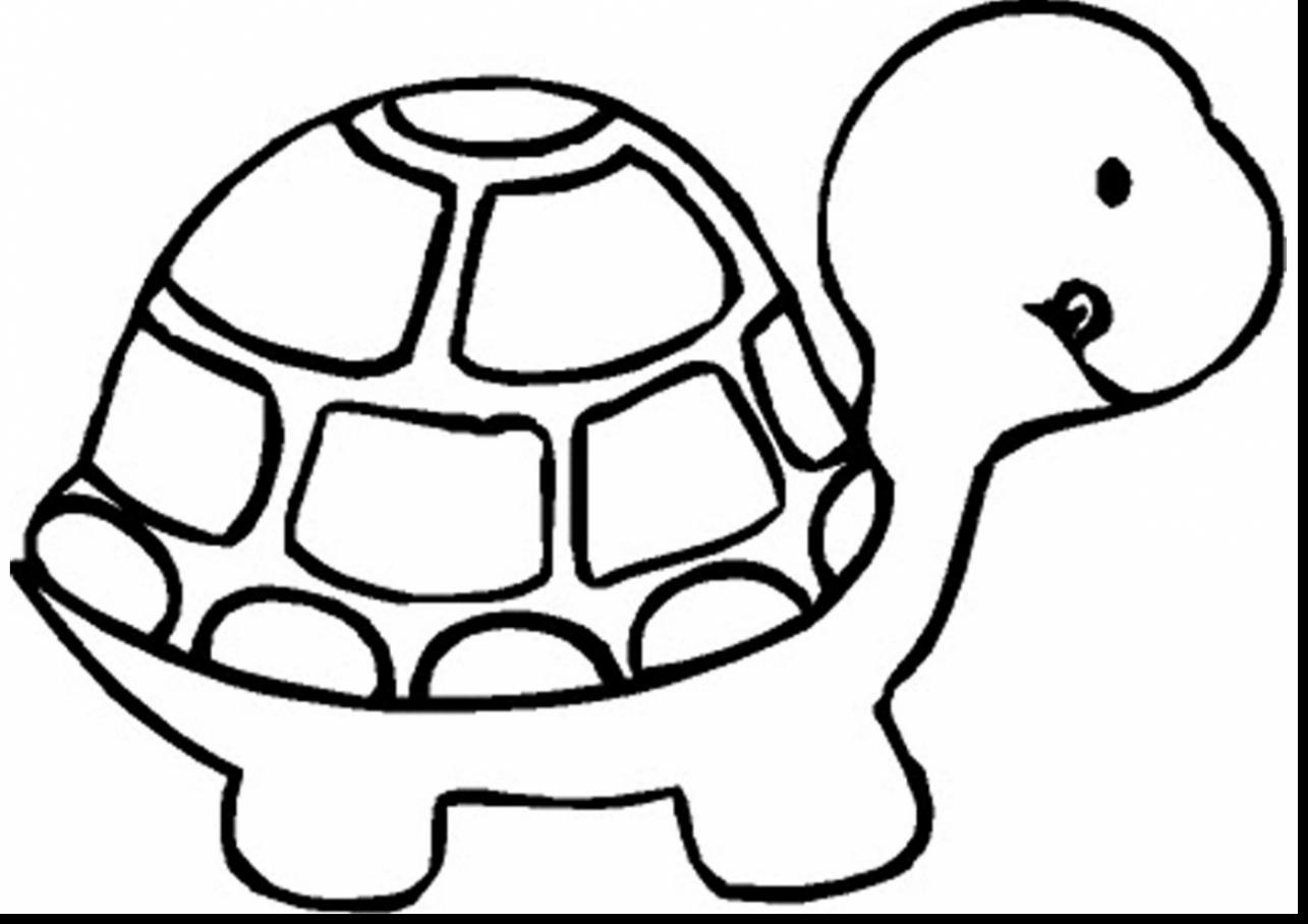 1285x908 Cartoon Baby Turtle Coloring Pages Free Coloring Sheets
