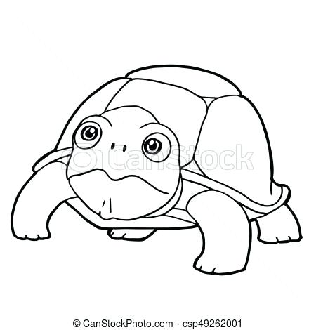 450x470 Cartoon Turtle Coloring Pages Turtle Coloring Book Plus Special