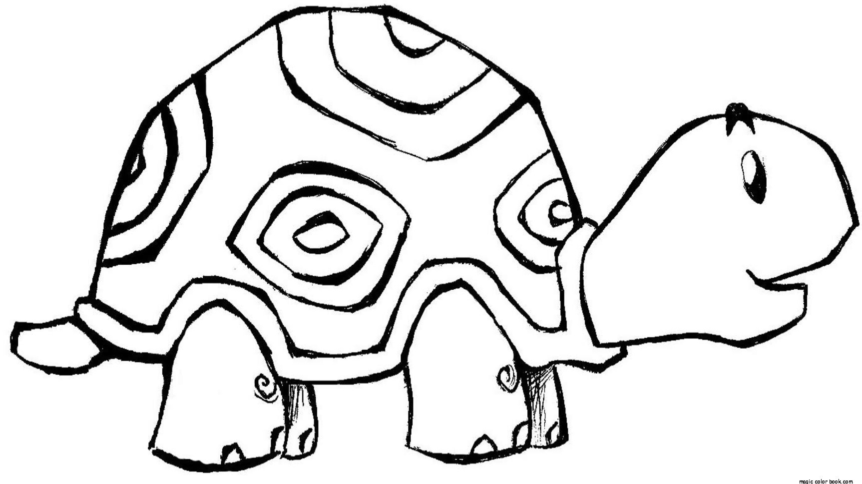 1726x969 Turtle Coloring Pages Online