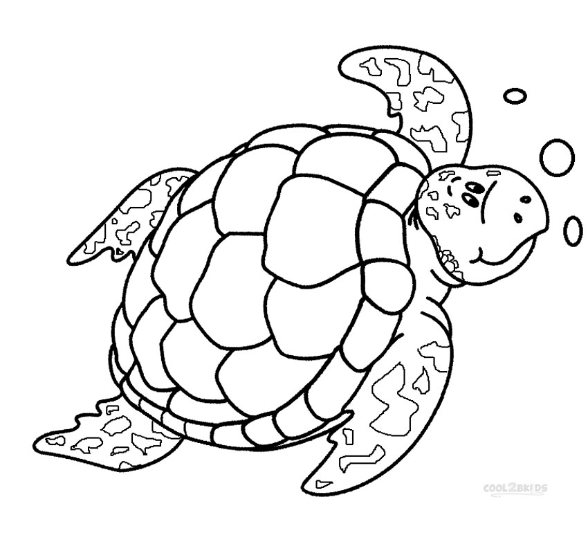 850x770 Sea Turtle Coloring Pages Printable Sea Turtle Coloring Pages Sea
