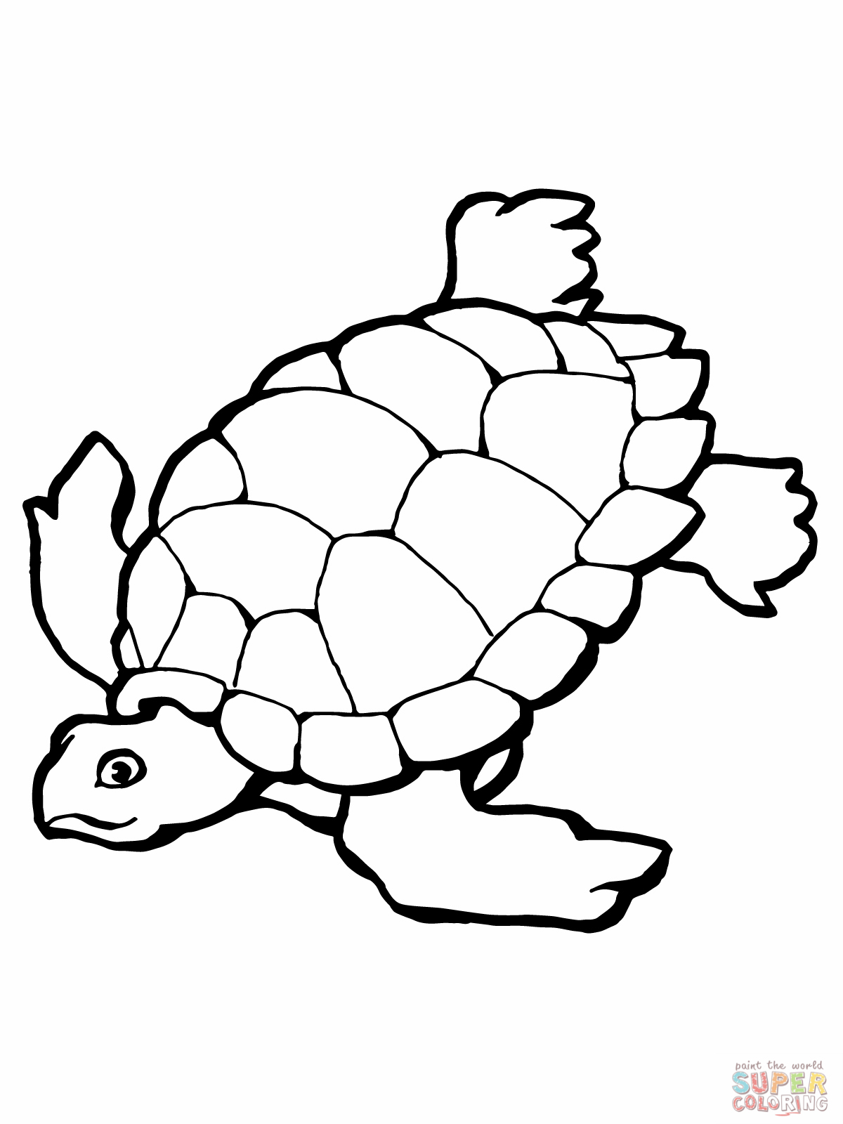 Turtle Coloring Pages For Preschoolers at GetDrawings.com ...