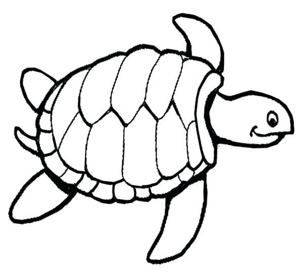 600x539 Little Sea Turtle Coloring Page Stock Illustration Illustration