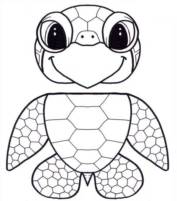 600x680 Baby Sea Turtle Coloring Pages Printable