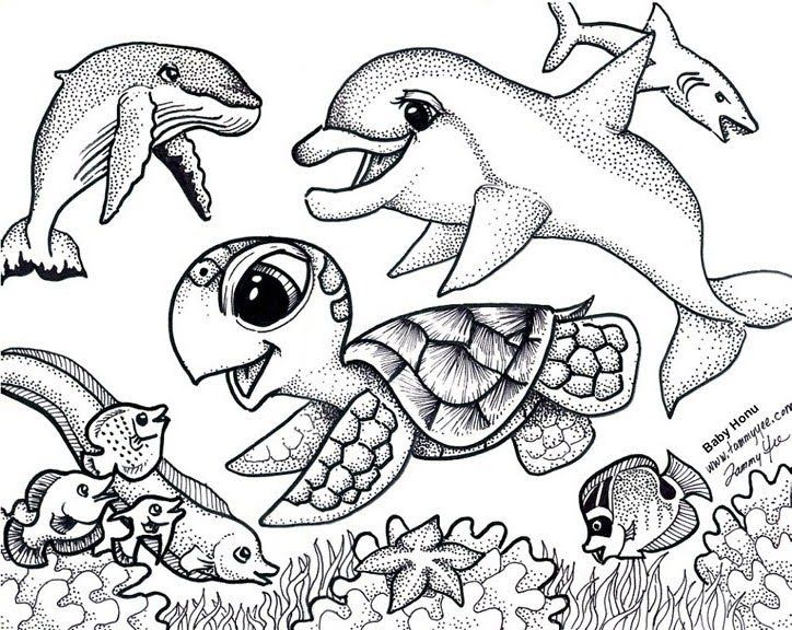 724x576 Sea Turtle Coloring Pages To Print
