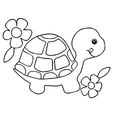 230x230 Top Free Printable Turtle Coloring Pages Online