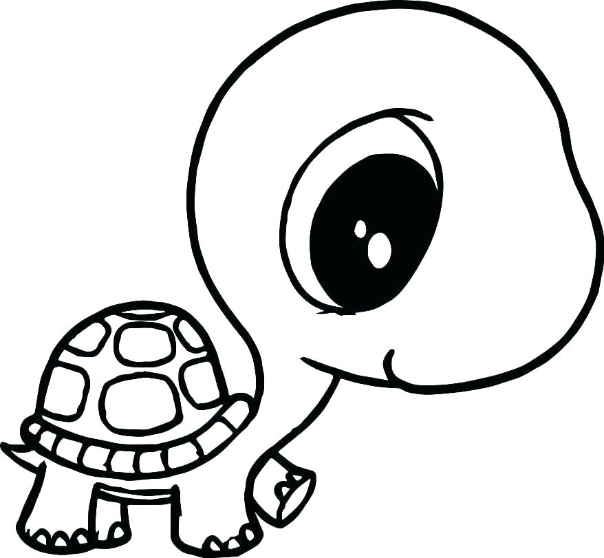 878x811 Printable Turtle Coloring Pages For Adults