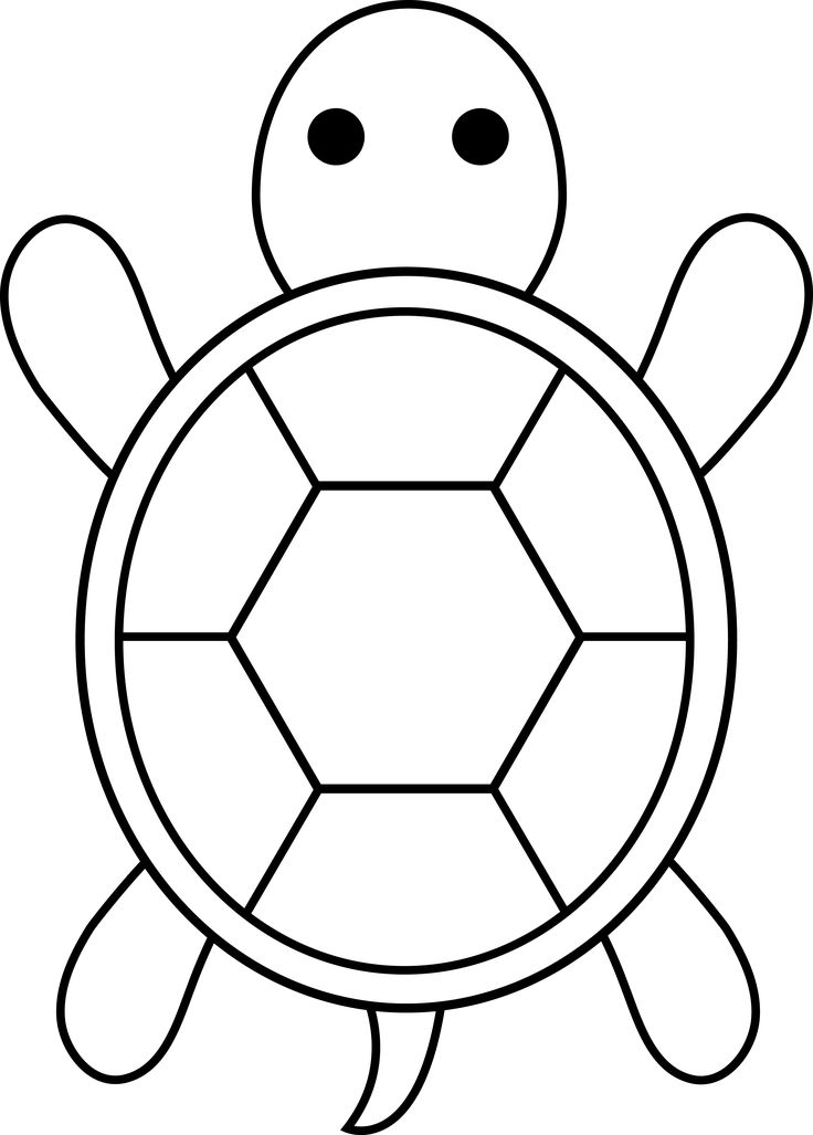 Turtle Shell Coloring Page
