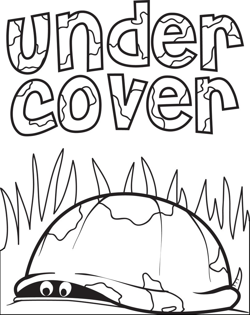 813x1024 Free, Printable Turtle Hiding In Its' Shell Coloring Page For Kids
