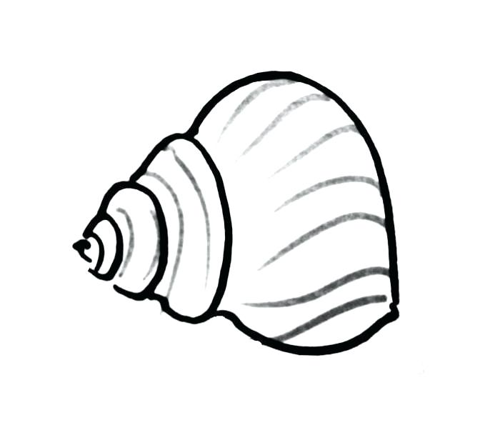 672x602 Shell Coloring Pages Sea Shell Coloring Pages Turtle Shell