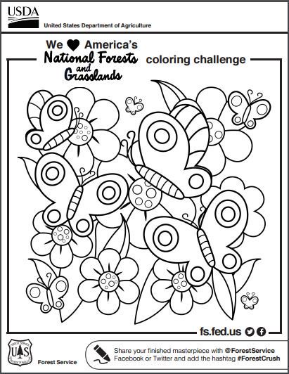 411x532 Every Kid In A Park On Twitter Find Coloring