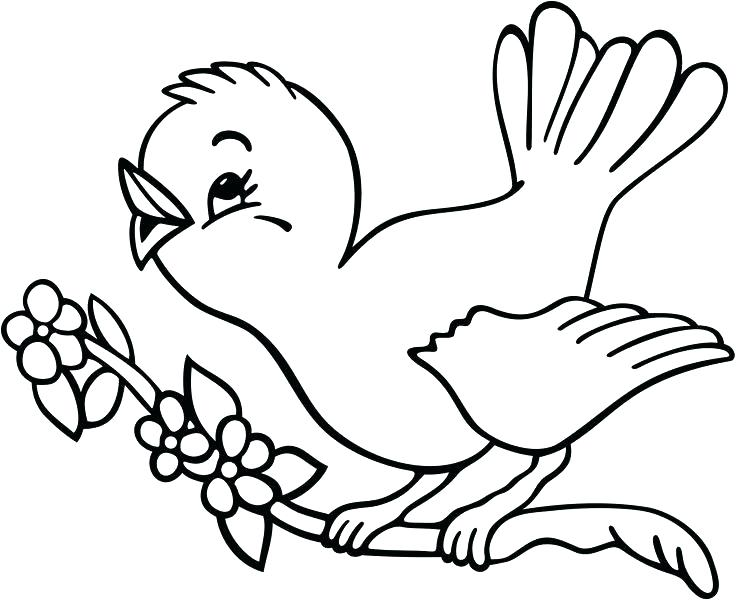 736x600 Free Bird Coloring Pages For Adults Bird Color Page Twitter Little