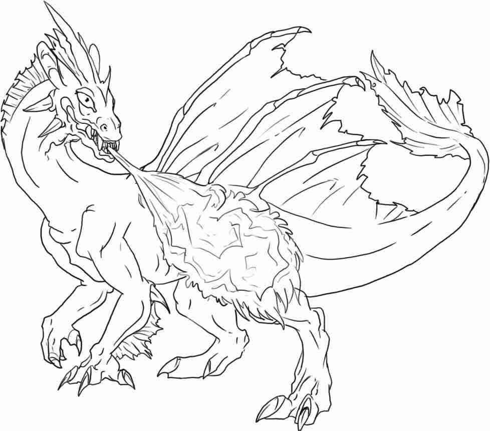 978x860 It S Here Coloring Pages Of Real Dragons Realistic Dragon Head