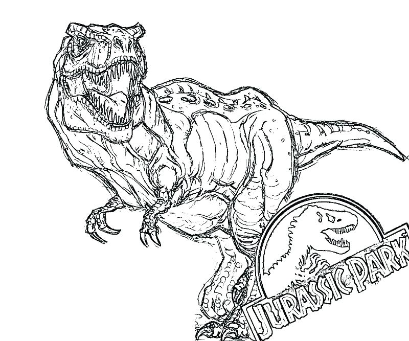 800x667 Coloring Pages Best Coloring Pages For Kids T Coloring Page T Rex