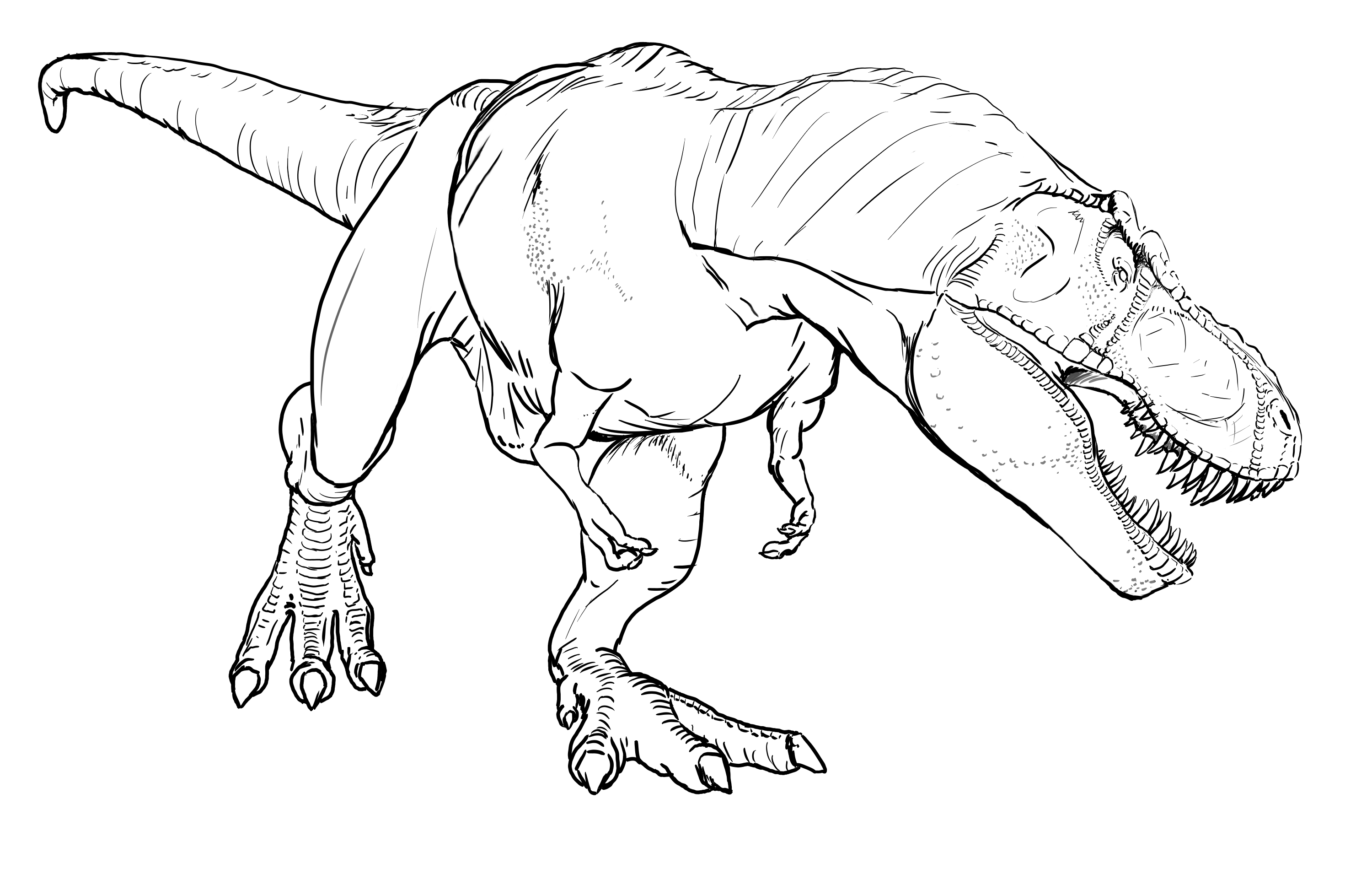 3000x1910 T Rex Coloring Pages