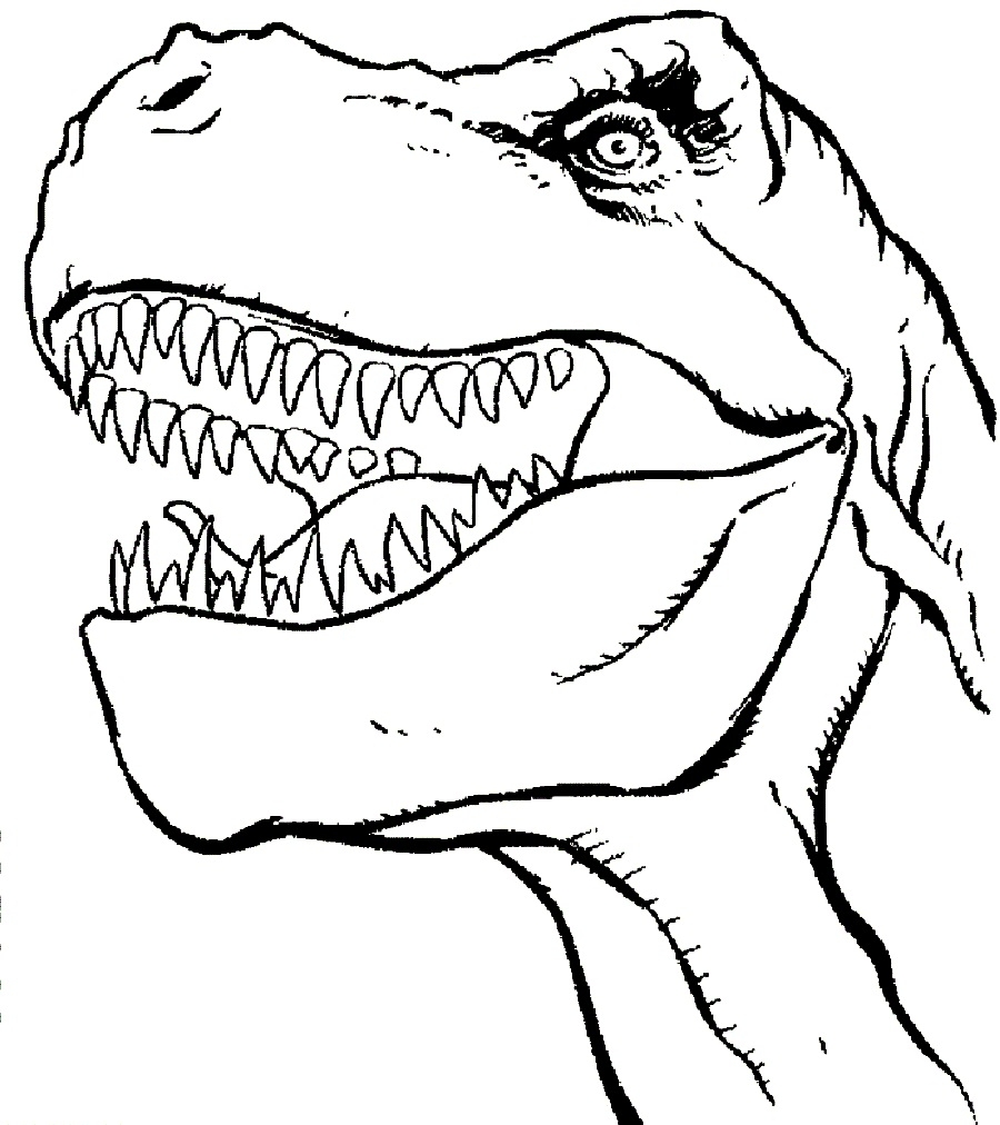 900x1012 T Rex Coloring Pictures Printable
