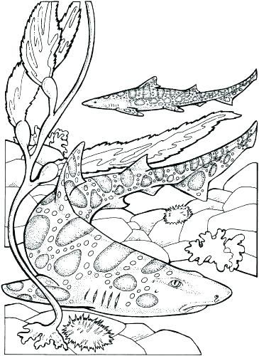365x500 Coloring Pages For Kids Spring United Kingdom Flag Page Medium