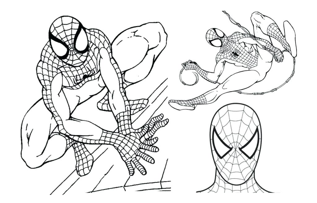 1024x657 Ultimate Spider Man Coloring Pages Spider Man Color Pages Coloring