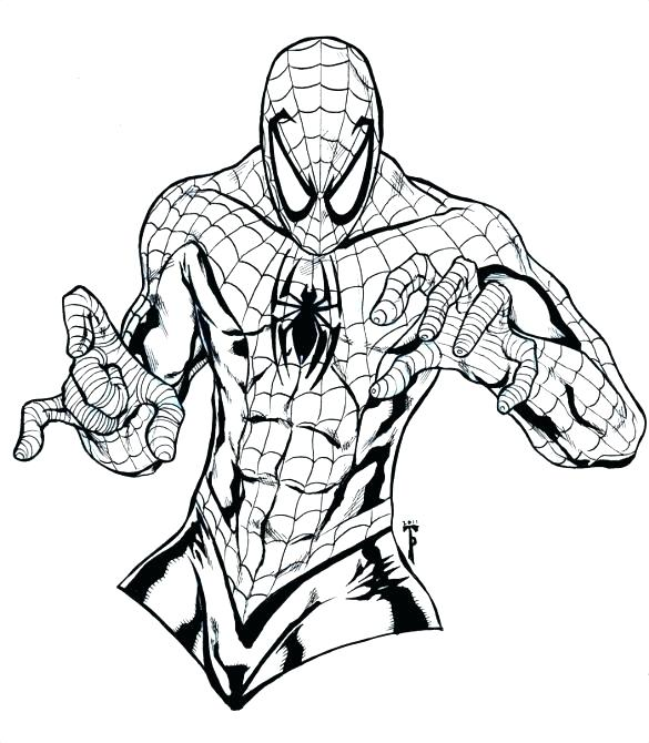 585x670 Spiderman Coloring Pages
