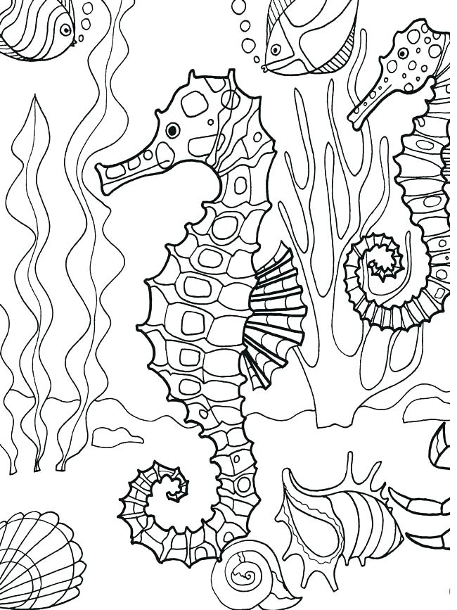 650x867 Marine Life Coloring Pages Ocean Life Coloring Pages Underwater