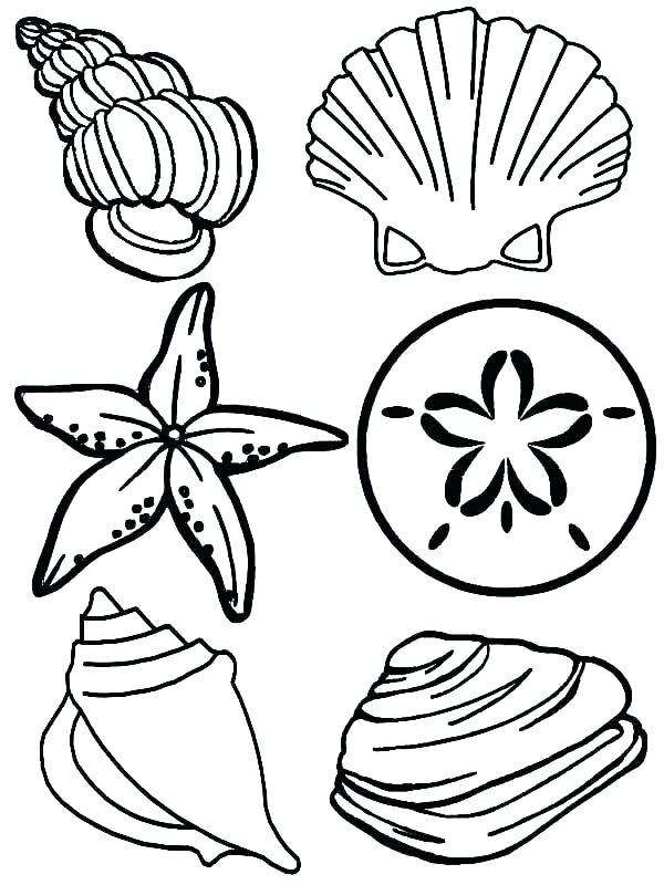 600x800 Coloring Pages Of The Ocean Ocean Life Coloring Pages Preschool