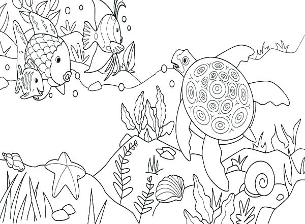 600x441 Under The Sea Coloring Sheets Under The Sea Coloring Page Under