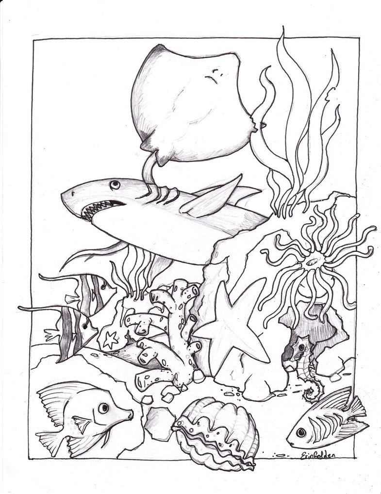 785x1018 Adult Ocean Coloring Pages To Print To Print Coloring Sheets