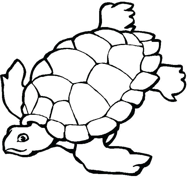 660x625 Coloring Pages Of Sea Animals Underwater Coloring Pages Underwater
