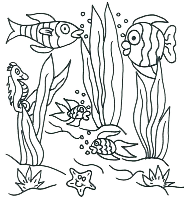 736x811 Underwater Coloring Pages Underwater Sea Creatures Coloring Pages
